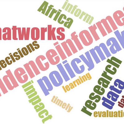 African policy research institutions to advance government use of evidence