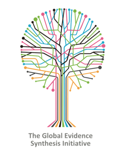 Global Evidence Synthesis Initiative